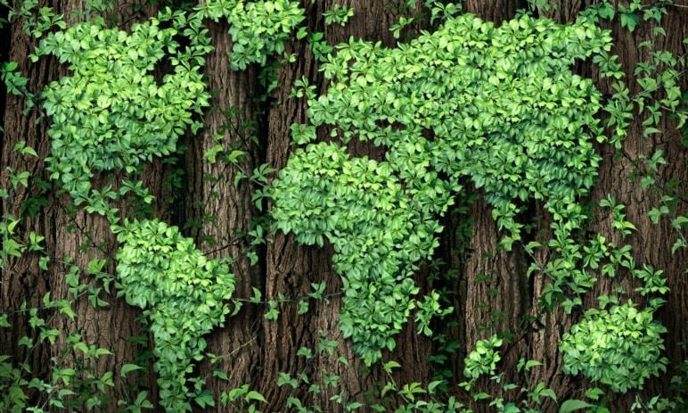 Zelené akcie jsou investiční příležitostí budoucnosti - Investujte zodpovědně